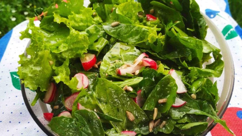 salad with spinach, riche, kale and rucola